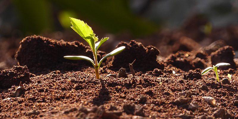 toprak-koruma-projesi